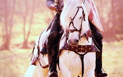Bestaat mijn prins op het witte paard eigenlijk wel? Mijn droompartner?